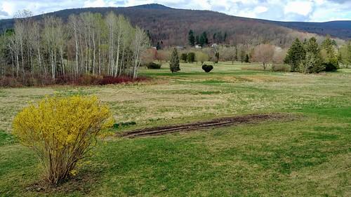Garden Time Lapse - 4/21