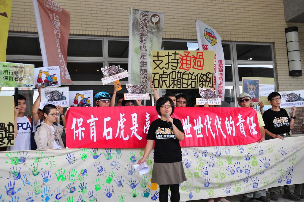 今年6月苗栗縣議會審查石虎保育自治條例,支持團體在議會外呼籲議會通過條例。攝影:孫文臨。