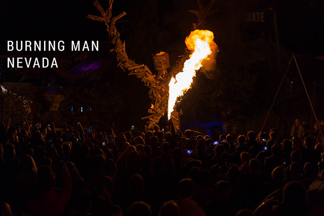 one-week long Burning Man Festival in Nevada, for hippies and art lovers