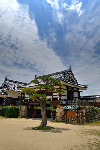 04-06-2019 Hiroshima Castle (5)