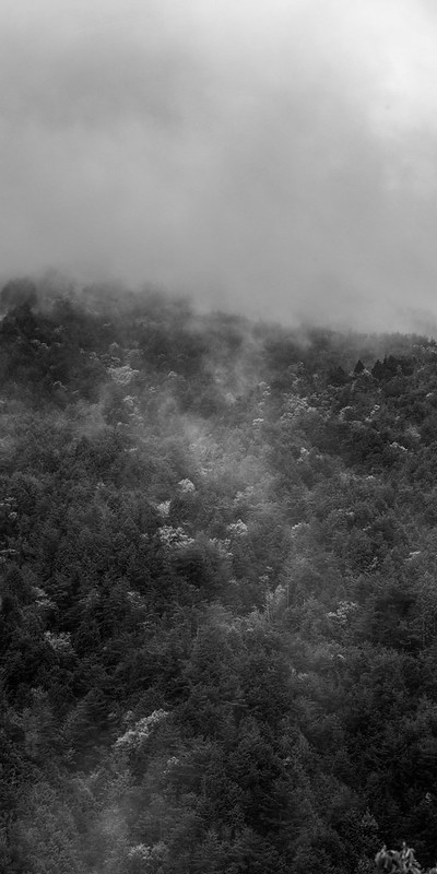Rainy mountain
