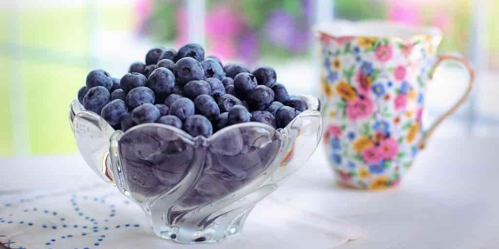 bleuets-réduit-maladies-cardiovasculaire