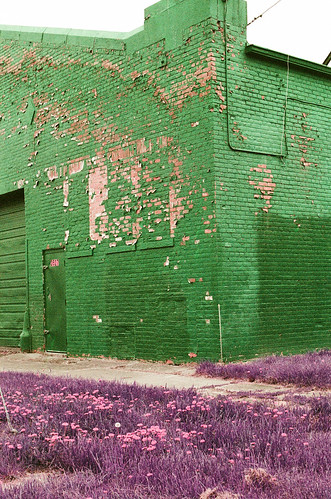 Detroit and metro on lomo purple | by sumacandmilkweed