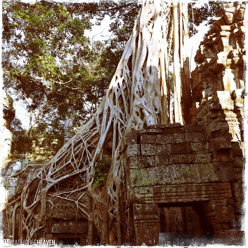 Cambodia - 0321