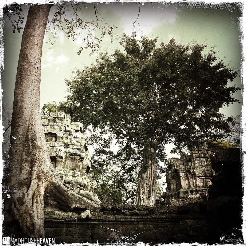 Cambodia - 0264