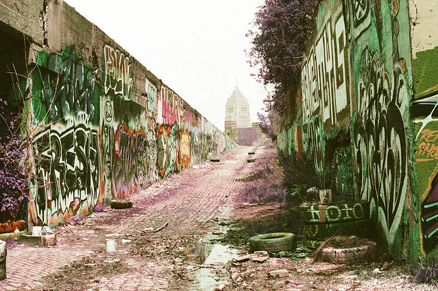 Detroit and metro on lomo purple