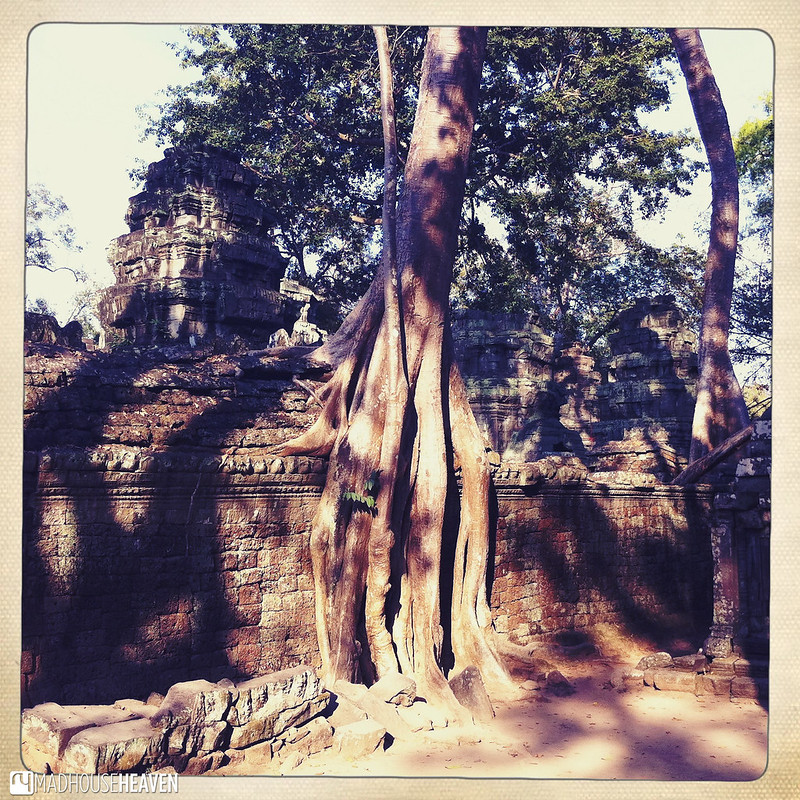 Cambodia - 0302