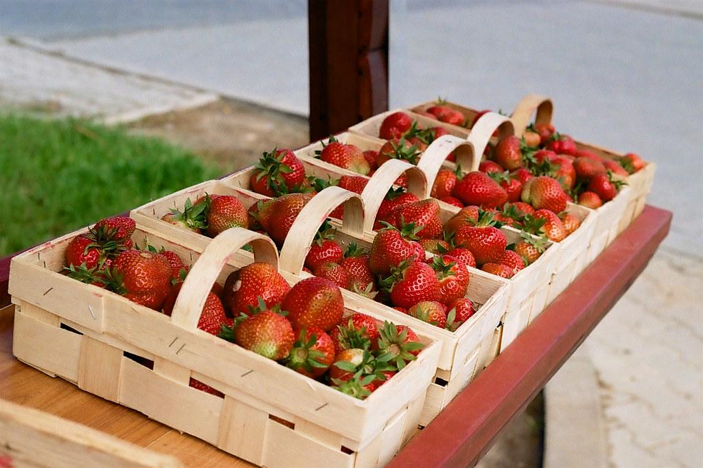 Świeże truskawki / Fresh strawberries