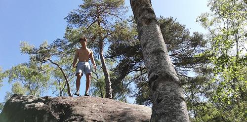 Fontainebleau 2019