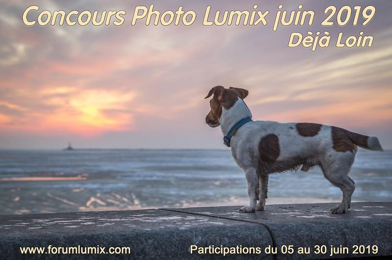 """Concours juin 2019 """"Dèjà loin"""" 48003514167_6229b697e7_c"""