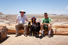 20190603_Petrified_Forest_Vacation_0015.jpg