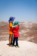 20190603_Petrified_Forest_Vacation_0008.jpg
