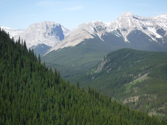 Hoffmann mountain along the trail Alberta Canada 2019
