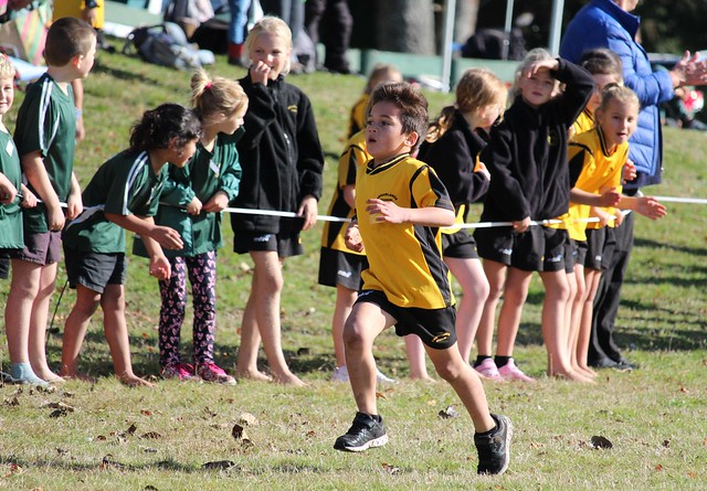 Reporoa Cluster Cross Country