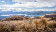 Looking north to Lake Taupo