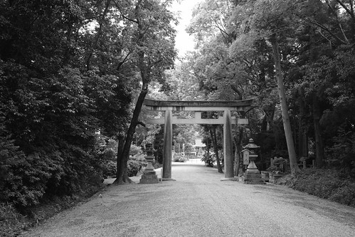 05-06-2019 Nara vol01 (5)