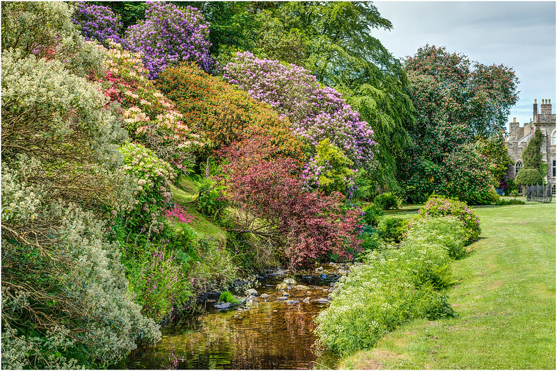 A Stream Of Early Summer Colour - Hartland Abbey, Devon.