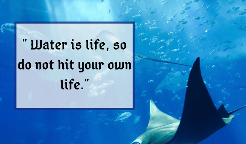 world ocean day 2019 quotes