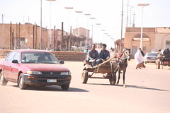 A stifled economy means that cars and horse-drawn carts share the road in Asmara. Credit: Milena Belloni/IPS