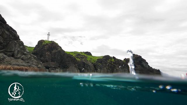 水面に顔を出すとそこには灯台♪
