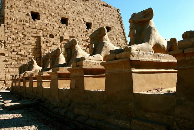 Sacred Rams