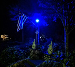 The American flag in blue. 4Je2019.