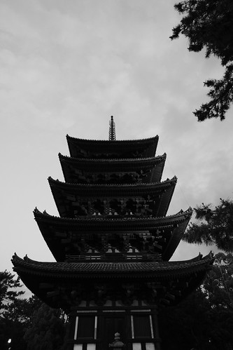05-06-2019 Nara vol03 (20)