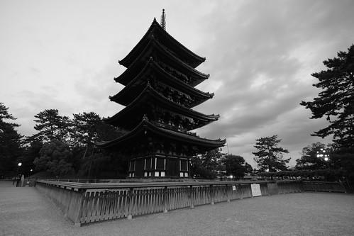 05-06-2019 Nara vol03 (15)