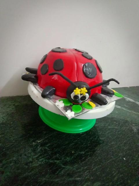 Ladybug Cake by Reena Saini of Cake Ventura
