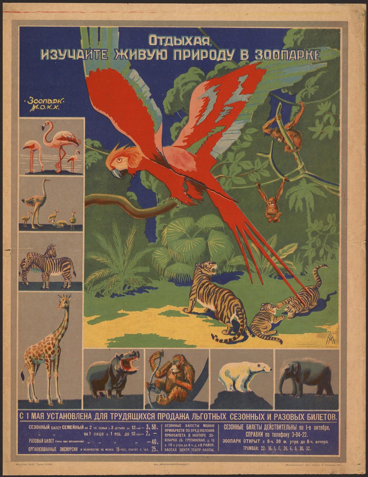 1931. Отдыхая, изучайте живую природу в Зоопарке