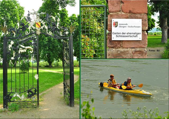 Juni 2019 ... Garten der ehemaligen Schlosswirtschaft Edingen-Neckarhausen im Juni 2019 ... Fotos: Brigitte Stolle