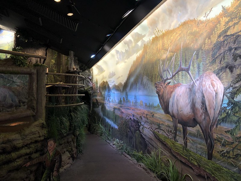 Umpqua Discovery Center