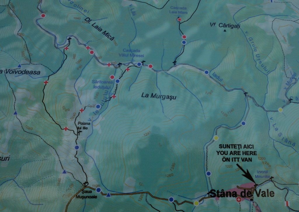 Map: From Stana de Vale to Bohodei Peak, Apuseni Mountains, Romania