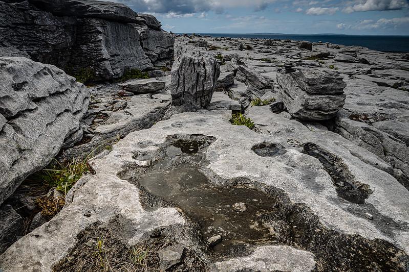 20190605-2019, Irland, The Burren-002.jpg