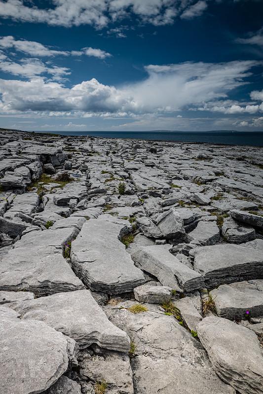20190605-2019, Irland, The Burren-001.jpg