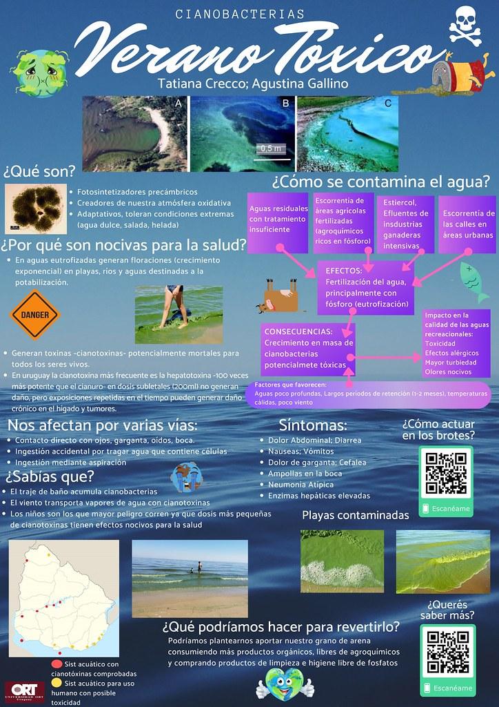 Ciencia para todos: pósteres de estudiantes