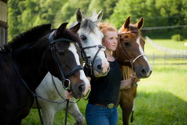 20190528 Headshots with Horses_91