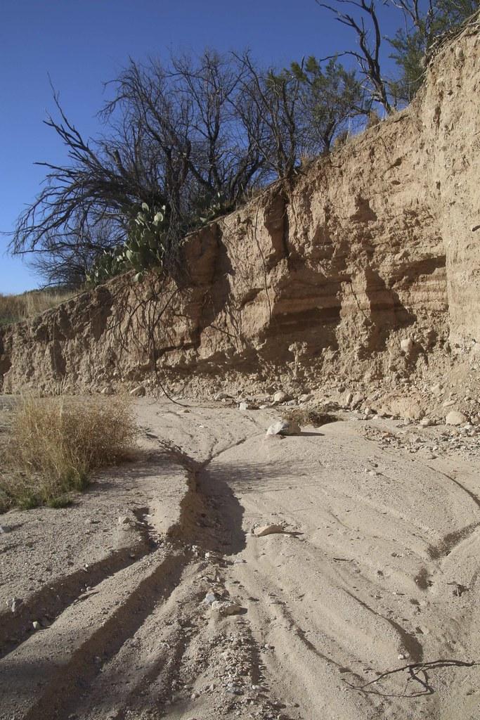 Desert Wash, Arizona