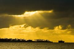 Tonga Sunrise