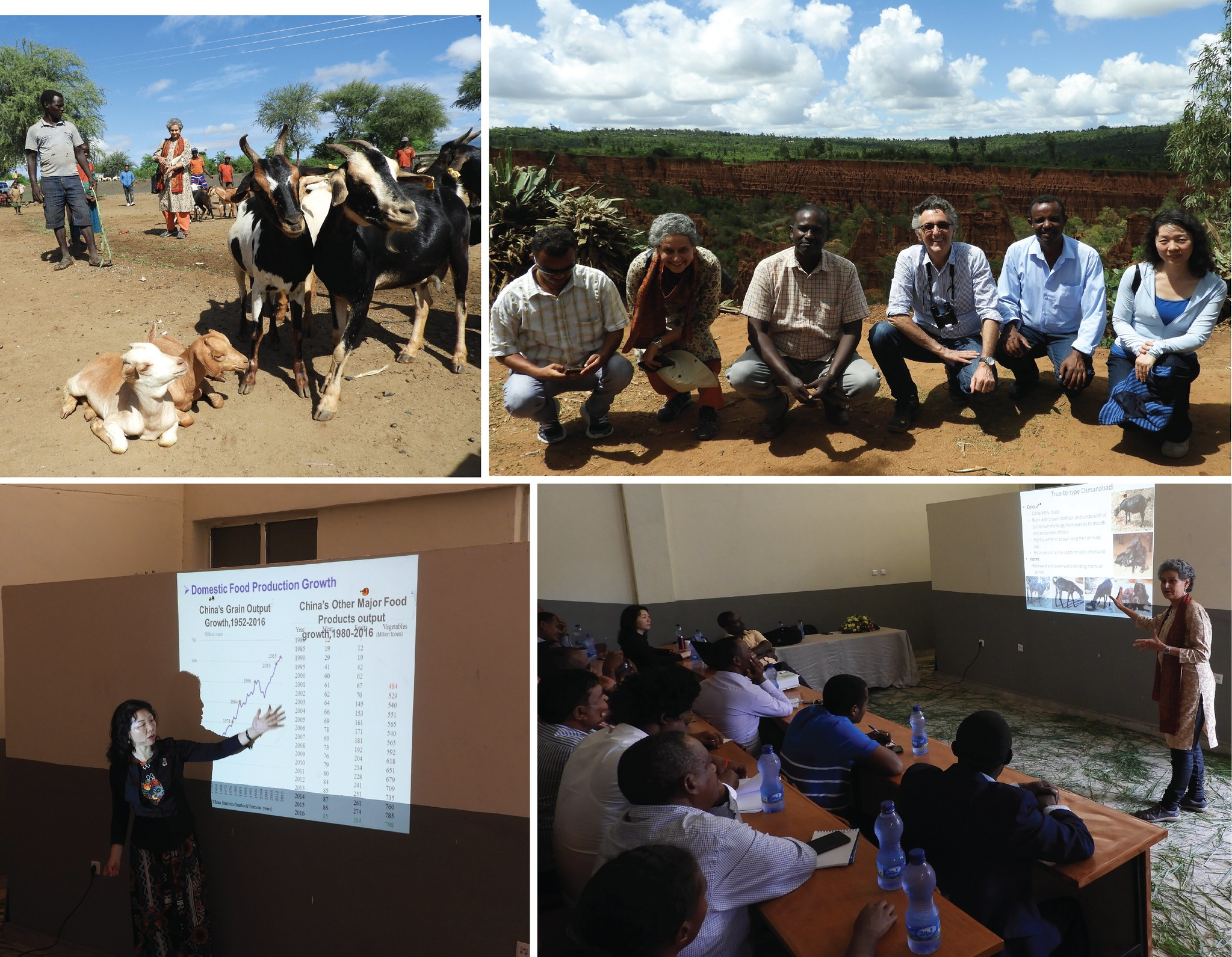 ILRI Board Members visit to southern Ethiopia - 11 May 2019