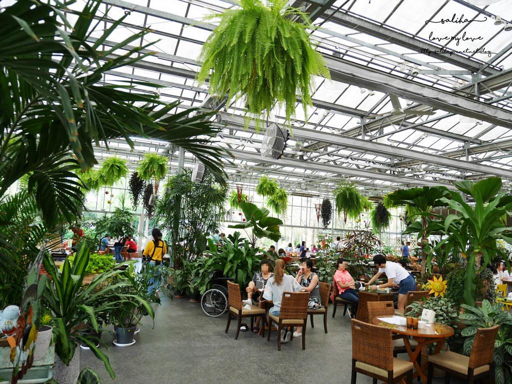 彰化田尾一日遊景點行程景觀餐廳推薦菁芳園 (10)