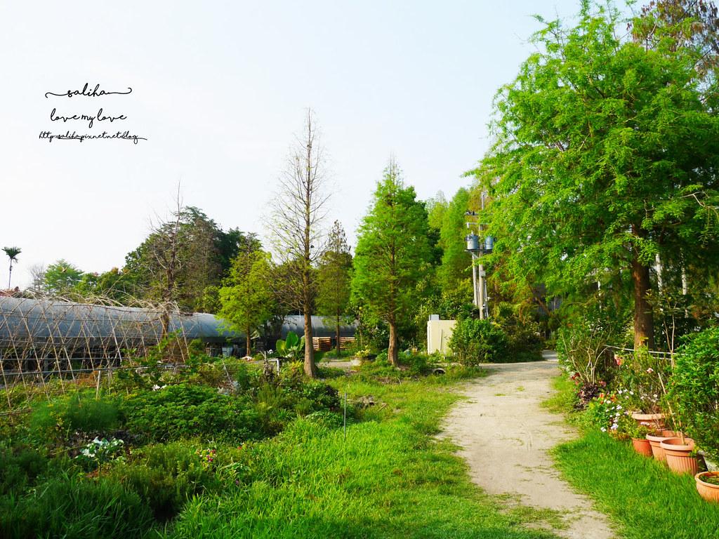 彰化田尾一日遊景點菁芳園下午茶咖啡餐點推薦 (6)