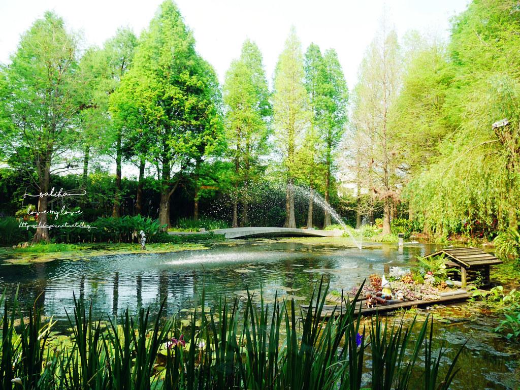 彰化田尾不限時景觀餐廳咖啡廳推薦菁芳園落羽松