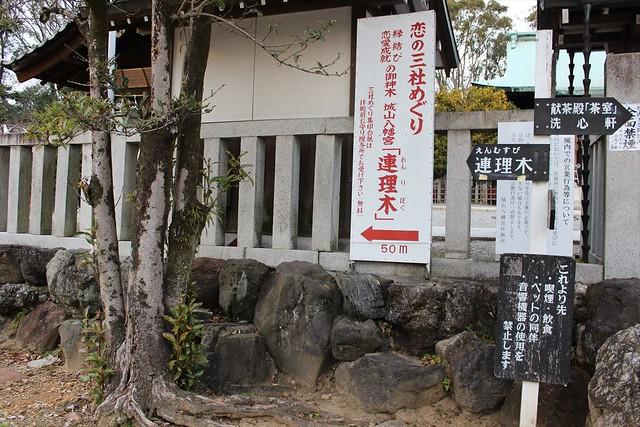 shiroyamahachimangu-gosyuin024