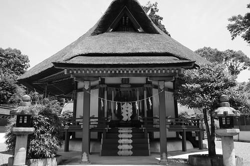 06-06-2019 Kyoto (21)