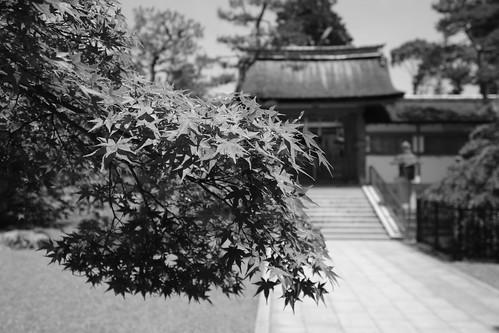 06-06-2019 Kyoto (18)