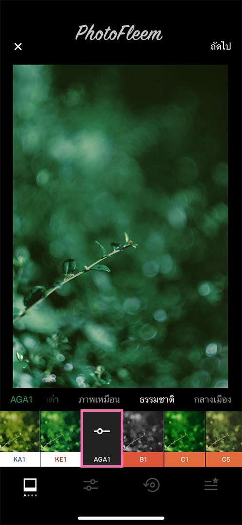 VSCO-Green-Dark-01