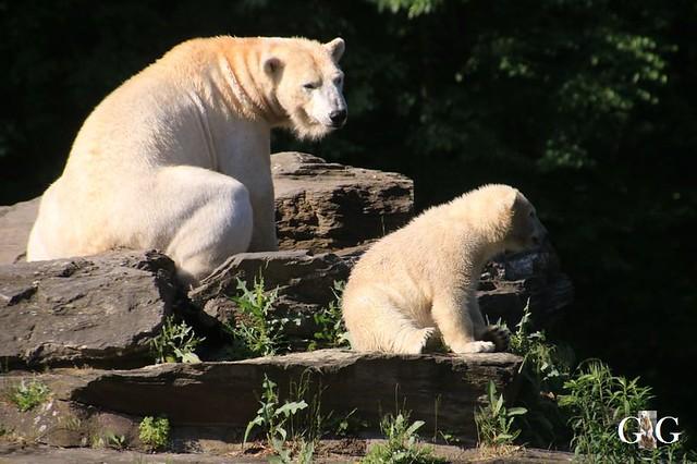 Besuch Tierpark Friedrichsfelde 30.05.201943