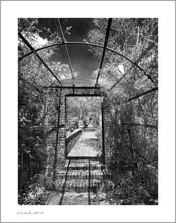 Tryon Palace Garden Gate