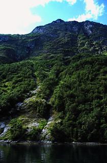 Norwegen 1998 (347) Geirangerfjord
